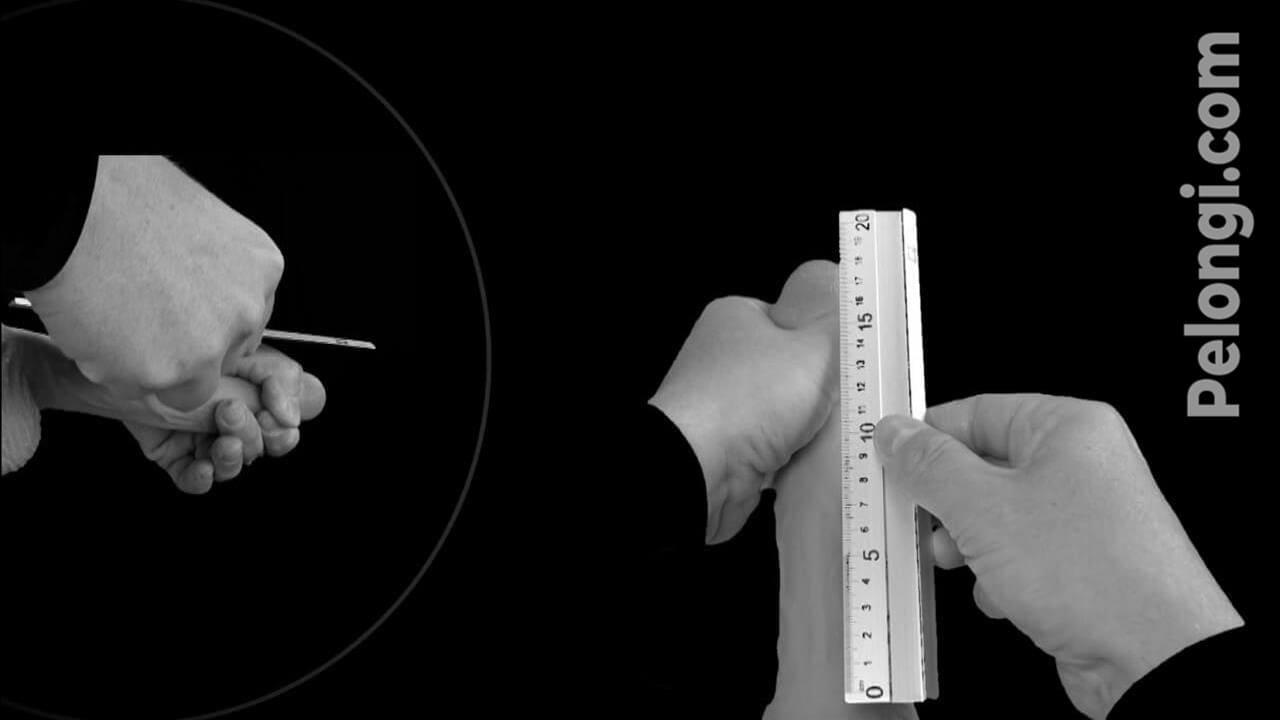 Wie Sie Ihren Penis messen